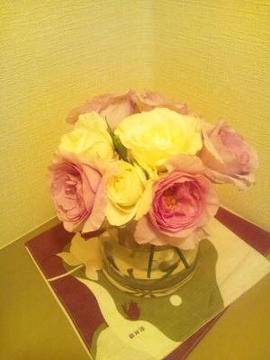 むらさきのバラ